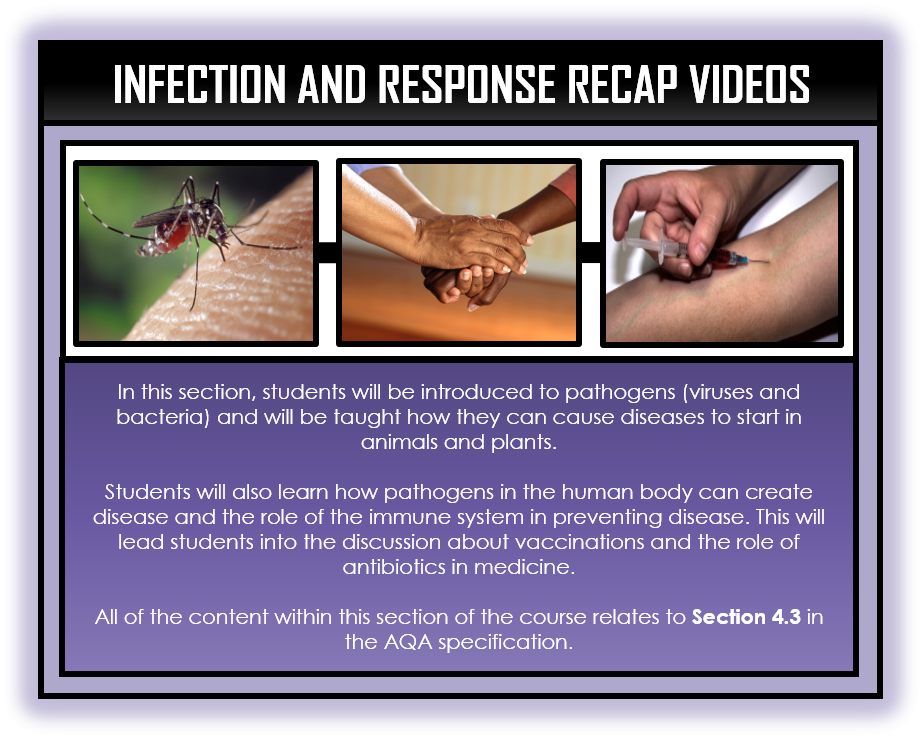 Biology Snapshots - Infection and Response Section