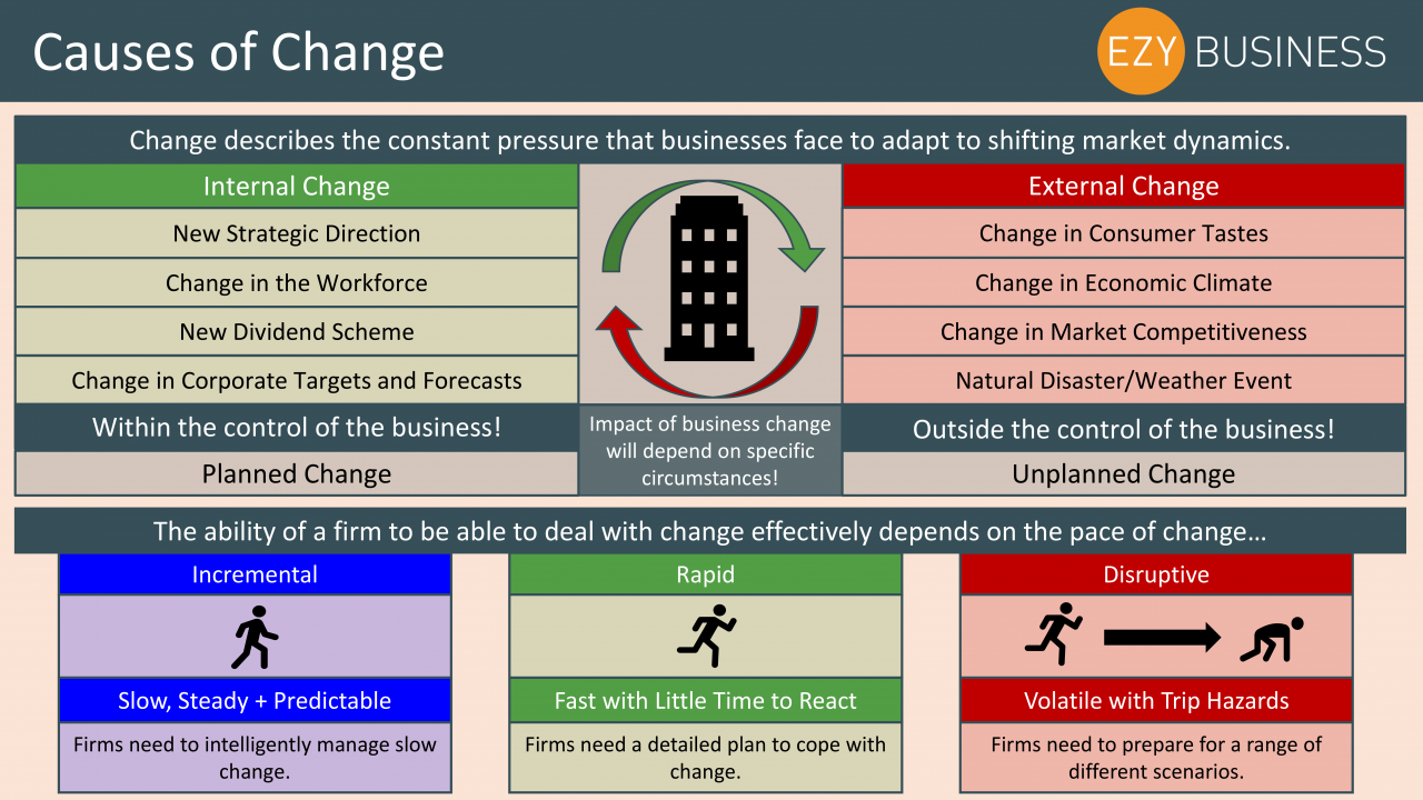 Business Studies Year 13 revision Day 11 - Causes of change