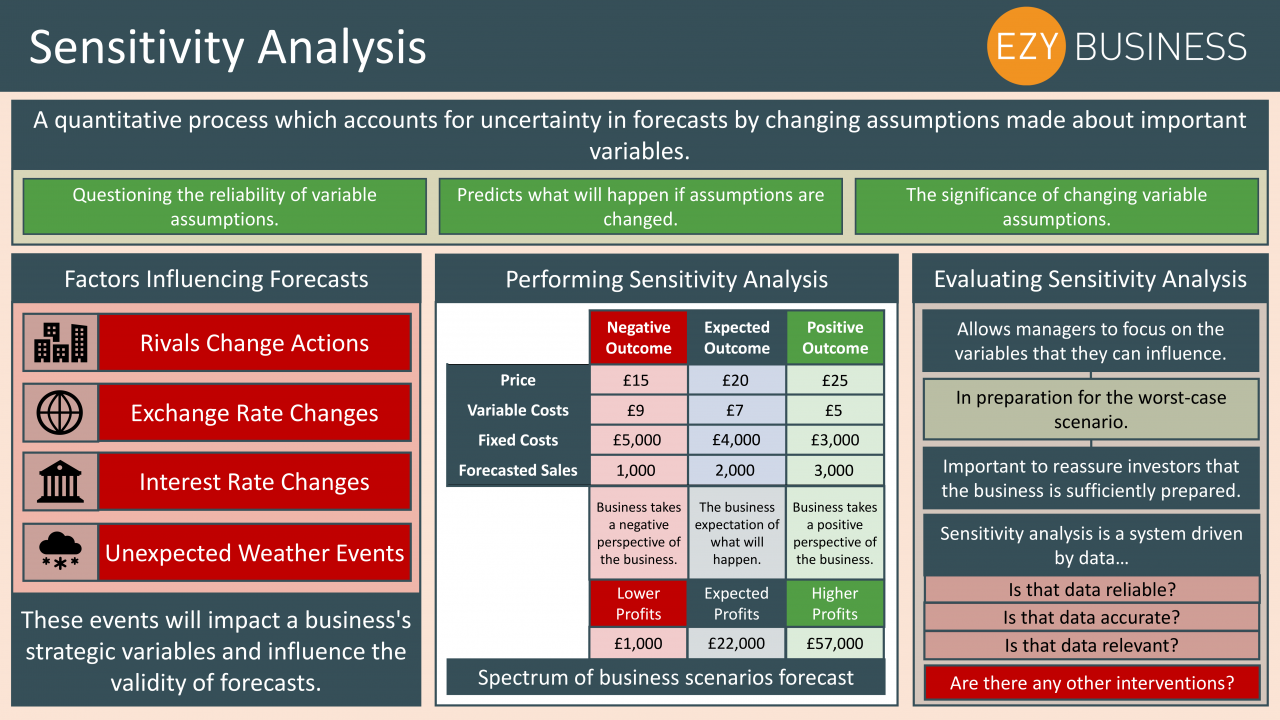 Business Studies Year 13 revision Day 23 - Sensitivity Analysis