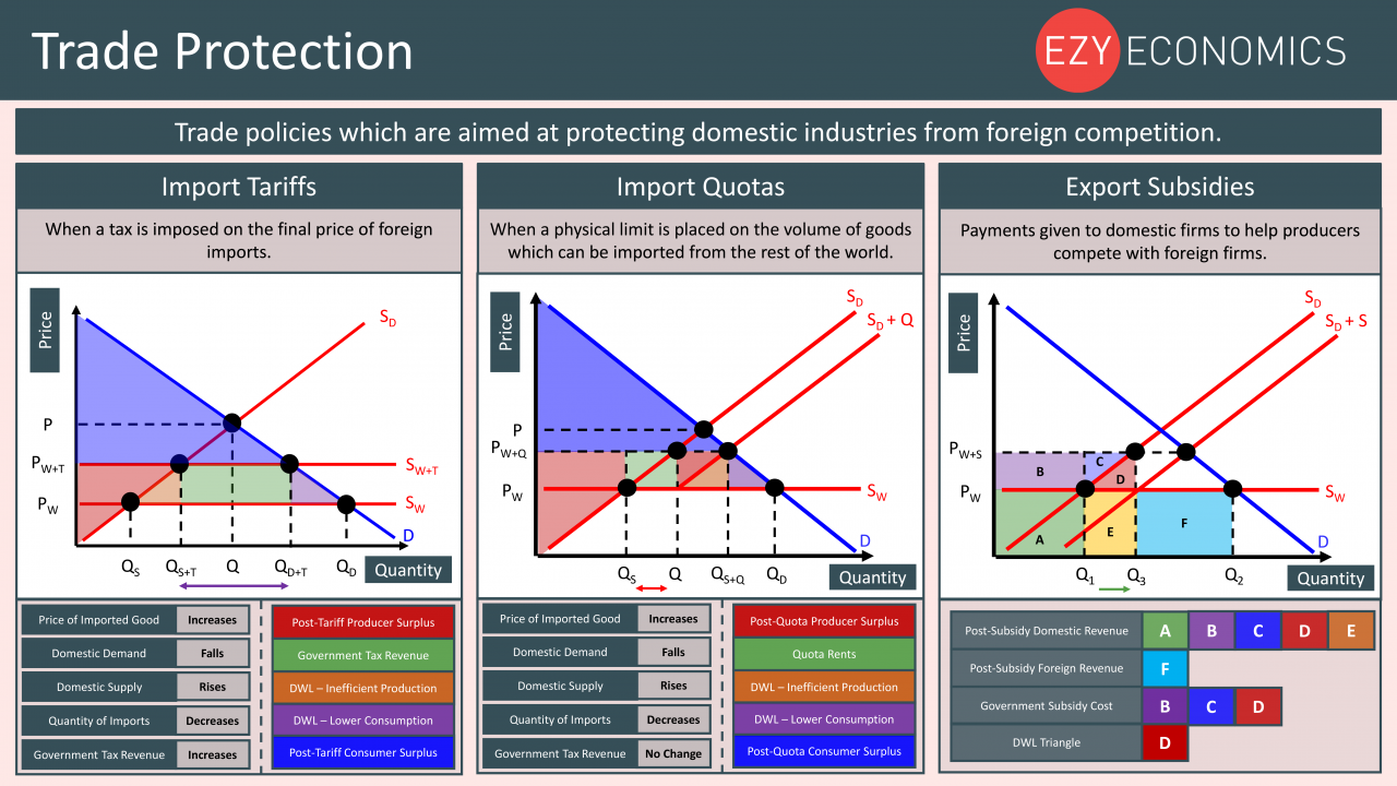 Economics Year 13 revision Day 25 - Trade Protection